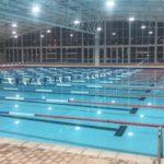 Swimming Pool - Shortcrete Africa